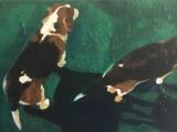 Painting by Elizabeth Sparr - Buddy & Bosco